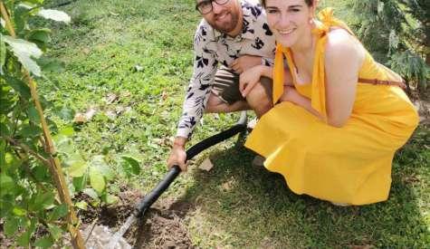"""Инициатива на младоженци разкраси район """"Южен"""" с прекрасни декоративни дървета от вида Магнолия"""